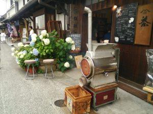 梅雨の季節 アジサイと美観地区、お茶屋さん