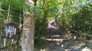 鈴虫寺の階段